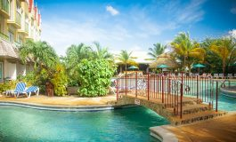 TRIPADVISOR CERTIFICATE  OF EXCELLENCE AWARDED  TO COCO PALM