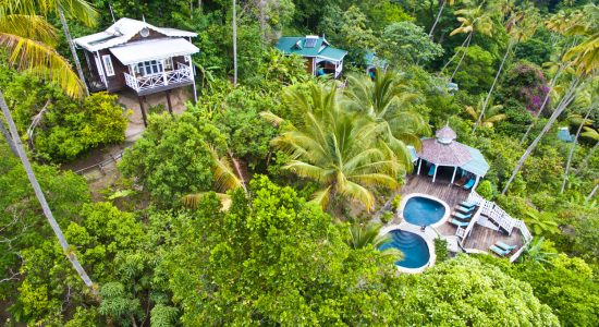 An overhead view of Fond Doux amidst lush, green vegetation.