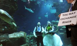 Bahamas trying to beat Guiness World Record in Undersea Weddings