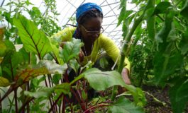 The Future of Agriculture is in the Hands of our Youth - For Better or Worse?