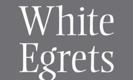 White Egrets—Derek Walcott