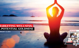 Marketing Wellness: The Caribbean's Spa and Wellness sector is a potential goldmine