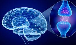 Managing Parkinson's Disease