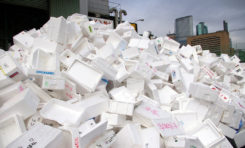 Chamber Discusses Styro-Foam Ban with Department of Sustainable Development
