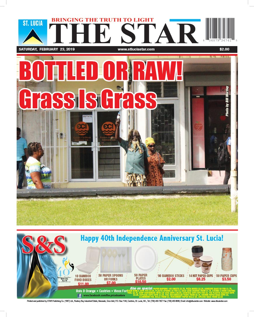 pulse Archives | The St  Lucia STAR