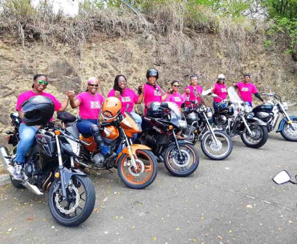 Sesame Street Bikers and Friends: Trailblazers on the Rise